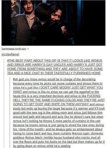 I laughed so hard!. Best Potter post i've seen so far. twelth' d semi. T AAN ANI HATIN TH ETA F RM H H M It k m in F because eve; -y time he _ is nu: same curta