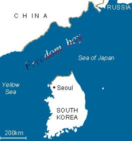 if north korea attacks MURICA. . Yae/ tow Sea