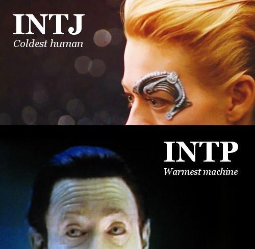 intj vs intp. i found this somewhere from the internet. INTJ Coldest human Warmest machima