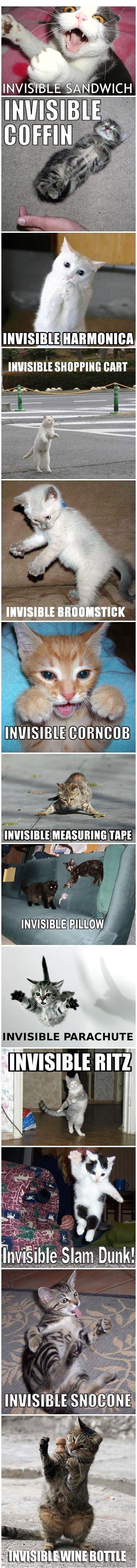 Invisible X.
