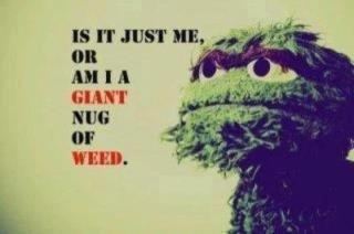 is it me?. . El MIT HUG weed