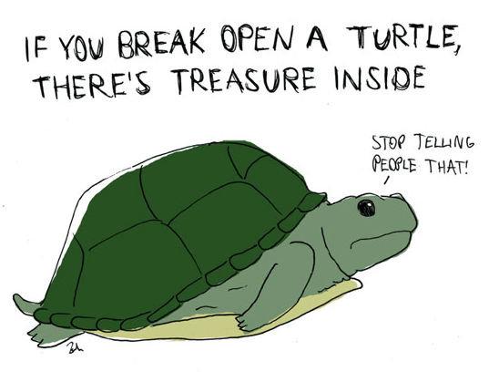 it is like a piñata. but i love turtles.... H: mu BREAK OPEN A TURTLE, 1' HERE' S TREASURE INSIDE Szpil Teu. aml- tpos THEE