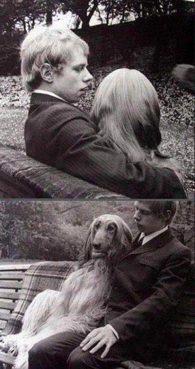 It must be love. . ferry-: