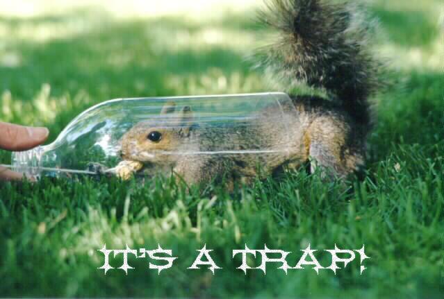 it's a trap!. .
