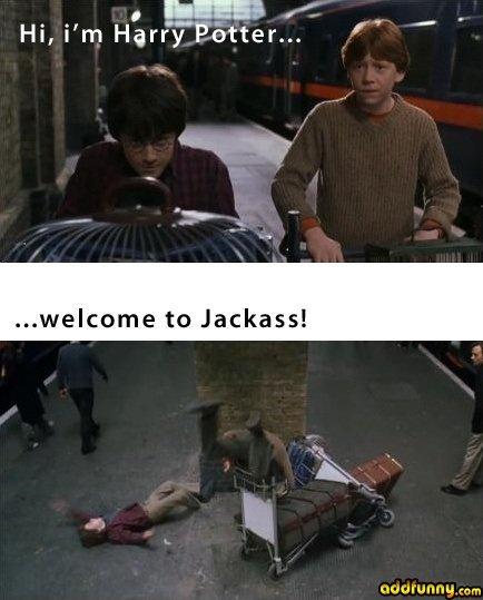 Jackass. jackass. Hi, i' m Harry Potter... f wercome tn Jackass! Atime, raur, who is jack