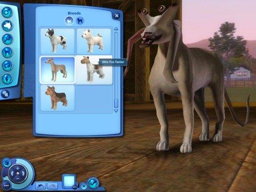 jar jar binks,. he likes mating with dogs... I love making Sims short or tall. LOOOL. jarjar binks Dogs sims
