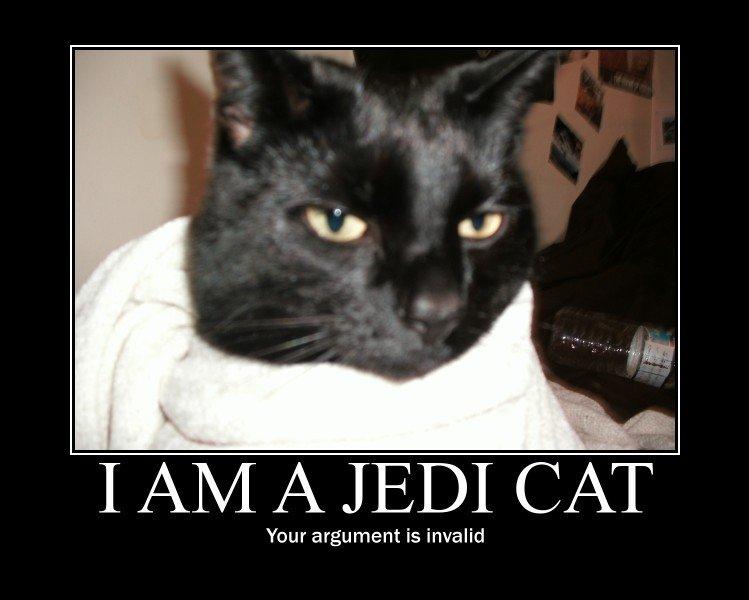 Jedi cat. OC.
