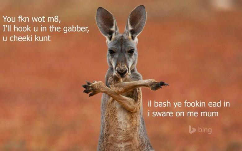 Kangaroo Jack. . I' ll hook u in the gamer, h. is . i u cheeki kunt H,' I Jr f 3 bash ye dovakin ead In Ac, ) i swore on me mum. U wot m8?