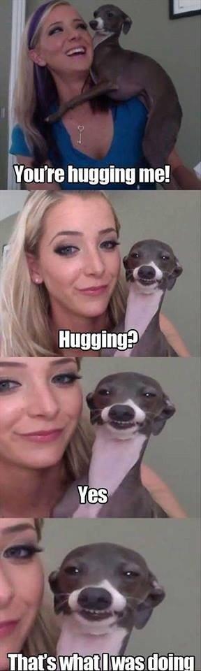 Kermit loves to hug. .