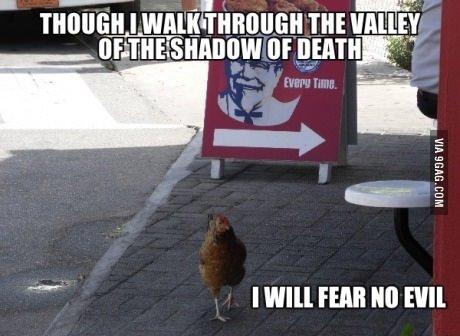 KFC ain't got nothing on me. .. Chicken's fw Chicken KFC