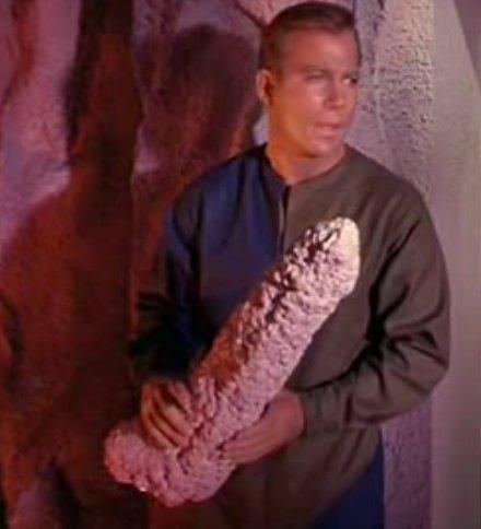 Kirkly Derp (star trek). found this from star trek: the original series (season 1 ep 8).