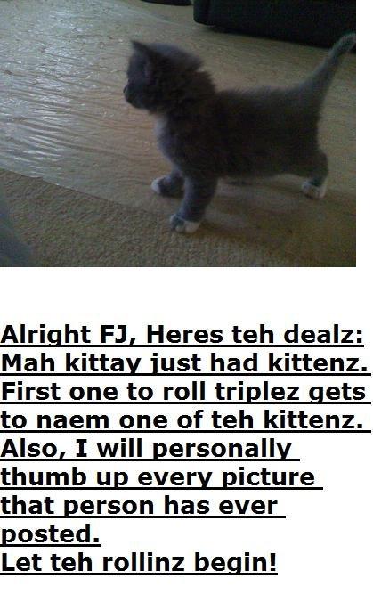 Kittayz. go for it<br /> Edit: Okay, kitten 1 haz been naemed: rolls for kitten # 2 will be quads.. YES TRIPLEZ. Name it.. Note.