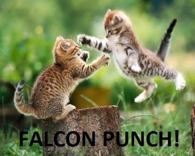 kitten fu. . kitten flying fa