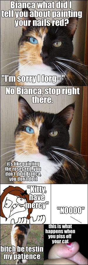 """Kitty. . Bullitt """"III when f Hun [Ilsa Mt I_ I_ he testet. that cat's eyes are fantastic"""