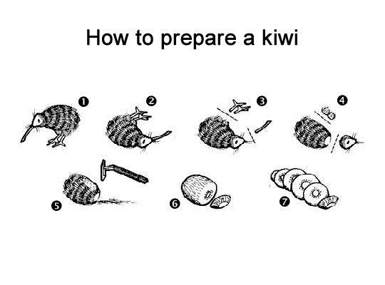 Kiwi_4b64a8_468741.jpg
