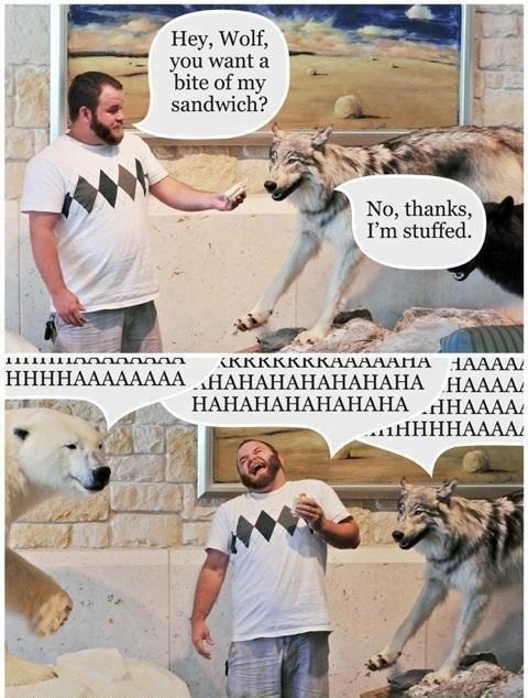 Kneeslapper. . you want a ti Mi bite of my 1. sandwich? Hey, Wolf, No, thanks? t