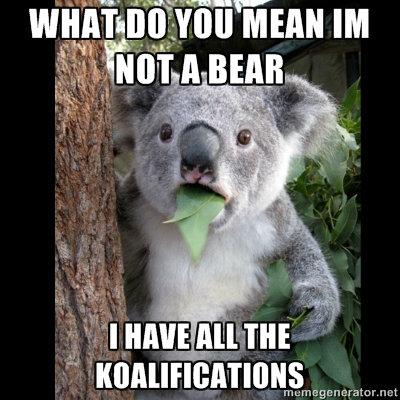 koalifications. . koala