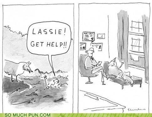 LASSIE!! BAAAD DOOOOG!!!. .