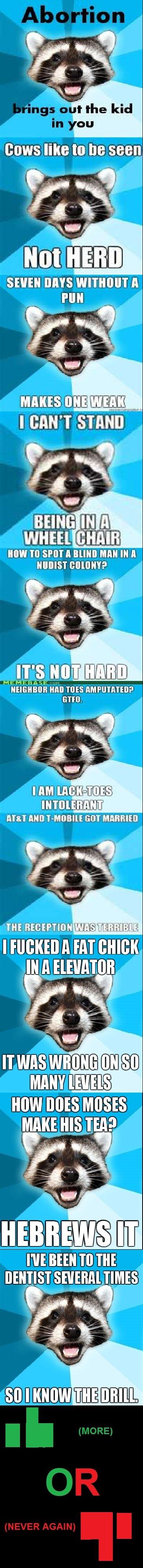 Lame Pun Raccoon Comp. Hope You Enjoyed! Thumb Up For More!. SPOT l tlel I taus. viii. HM] WEE HM Plai, ? tlt rakens tpb
