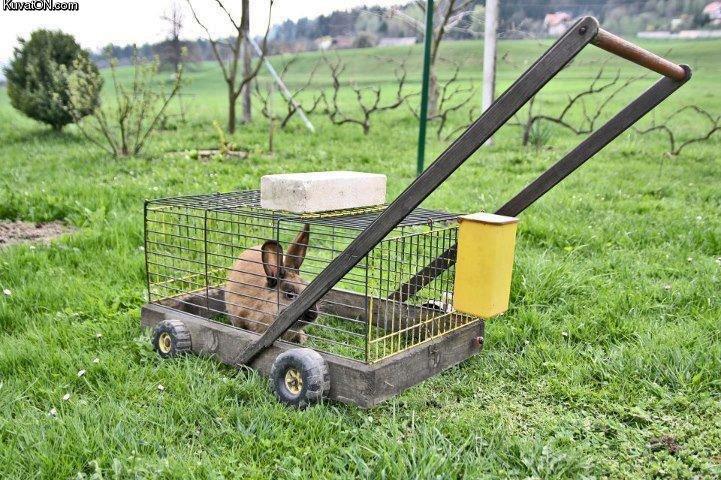 Lawn Mower. .