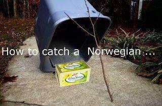 Legendary. SO epic.. i'm norwegian, and i lol'd