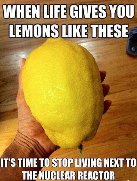 Lemons. . wuss HIE muss. but will it combust?