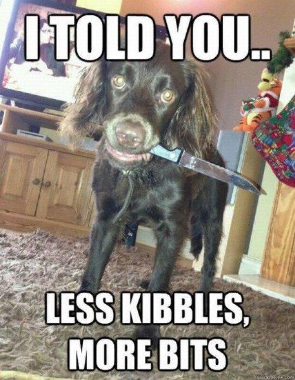 Less Kibbles. .