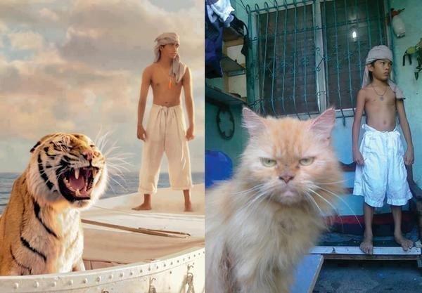 Life of Pi. great movie!!.. India.