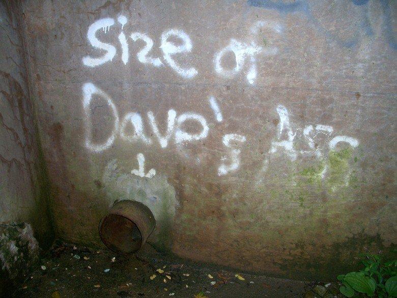 local graffiti. .. Guess he can bricks then...