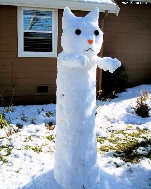 LONG SNOW CAT. LONG SNOW CAT OS LONG!!!!! VERY LONG INDEED!!!.