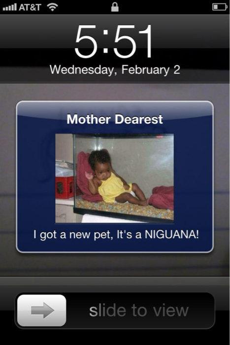 Looks like I got a text!. It is an iguana, it is a niguana.. sis/ sis: Wednesday, February 2 Mother Dearest. Better call Zimmerman before it breeds Niguana terarium iPhone