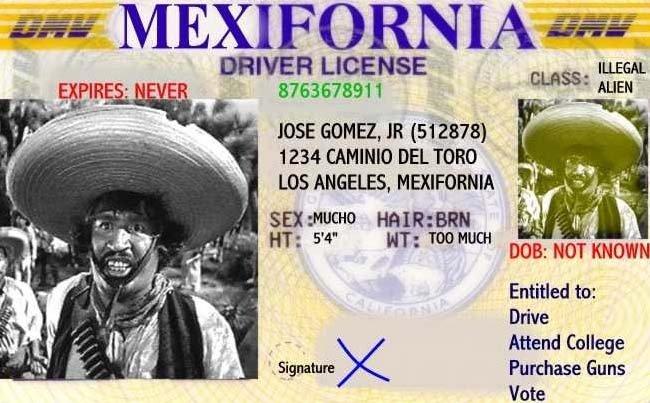 "Looks Legit. . WER LICENSE . u, Atee ILLEGAL 8763678911 i . 1 "" 'MEN JOSE annex, JR isi' 1234 CANINE) BEL TORO LOS ANGELES, CALIFORNIA toot oal! no Known Entitl looks legit"
