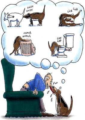 Man's Best Friend. . Dogs man funny comic