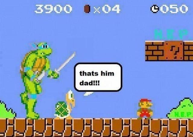 i Like Turtles i Like Turtles