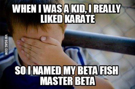 Master Beta... . WHEN I WASHA KID. I EAI KARATE 80 I HAM!!! MY BETA FISH MASTER BETA I. and you went on to inherit his name