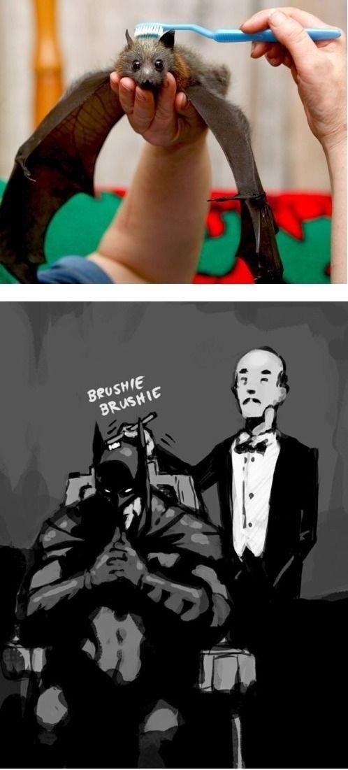 Master Wayne. .