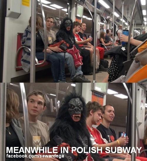 Meanwhile in Poland. Meanwhile in Polish subway. In POLISH. sud. ale skurwiel. to jest prawdopodobnie w warszawie. bambusy tam zawsze są.