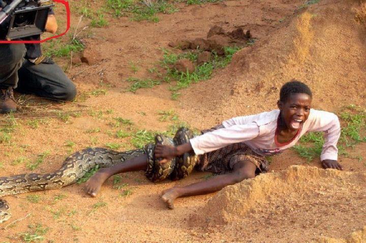 Media is more important. .. lol let the snake eat the negro hurr durr fhurh duhrrr