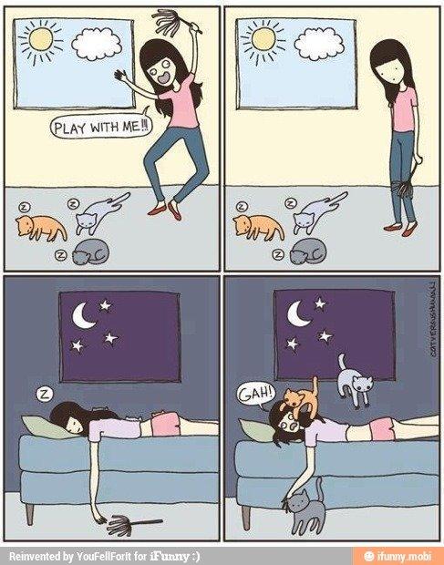 Meow :3. Source > .