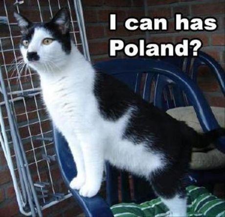 Meown Fur-hur. .. Every. . Time. Hitler cat