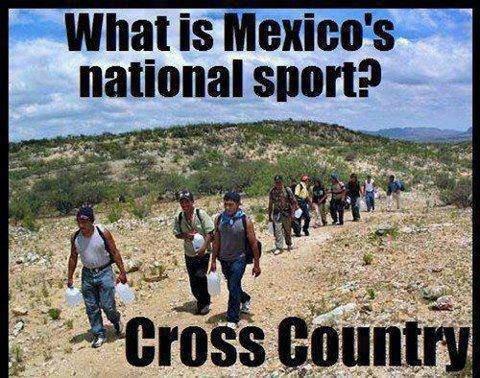 Mexico's favorite sport. i lol'd.