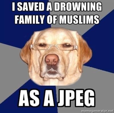 Mfw I'm a dog. . I SAVED A Ill'