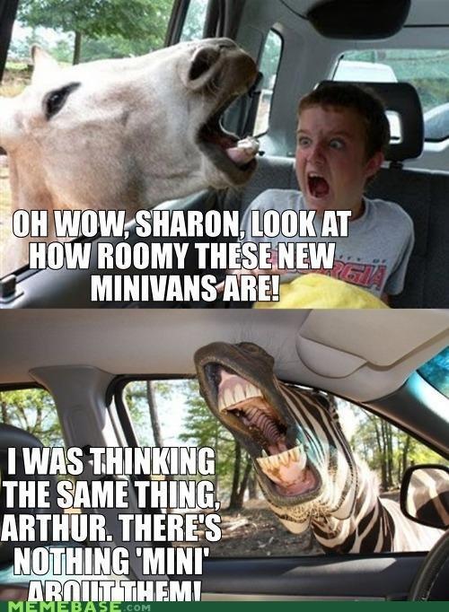 Mini Van Horses. check the tags.
