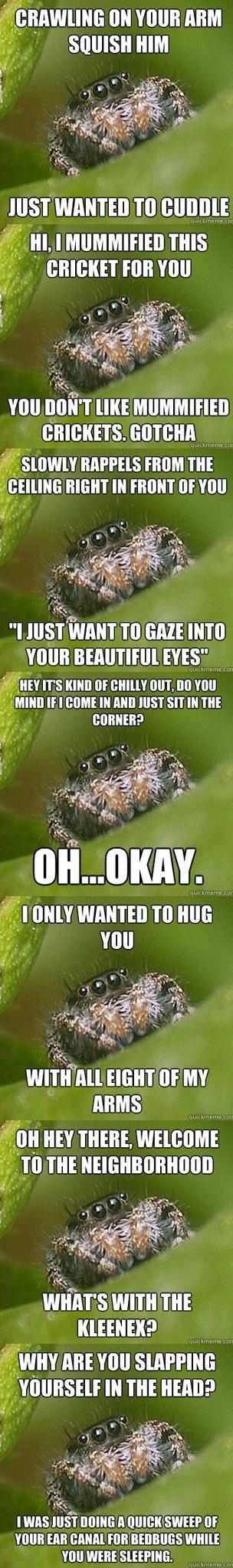 Misunderstood Spider. . an mun ml i HIM Just wanna TO : vuu [IKE r::, i) ii, tsim, r lolrus mun THE ll mii' TO can mu Ens? IT' S nanu Elf um, M 'mu a' i, mun If