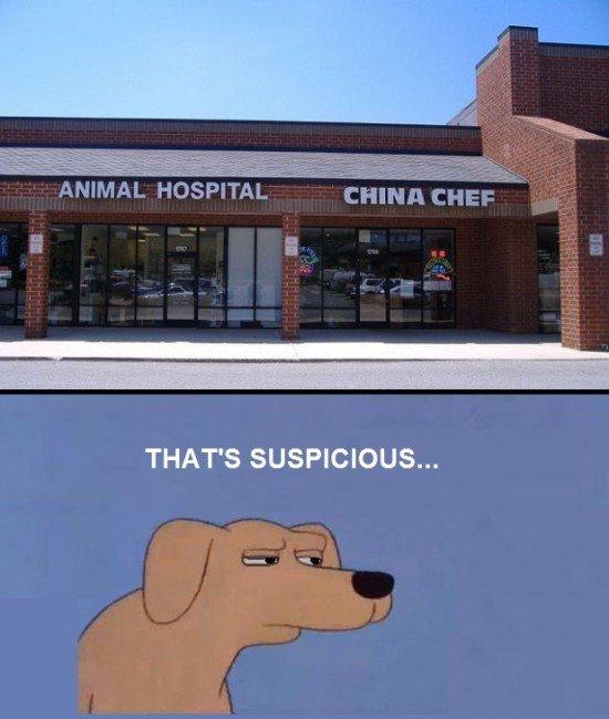 MMM. . THAT' S SUSPICIOUS...