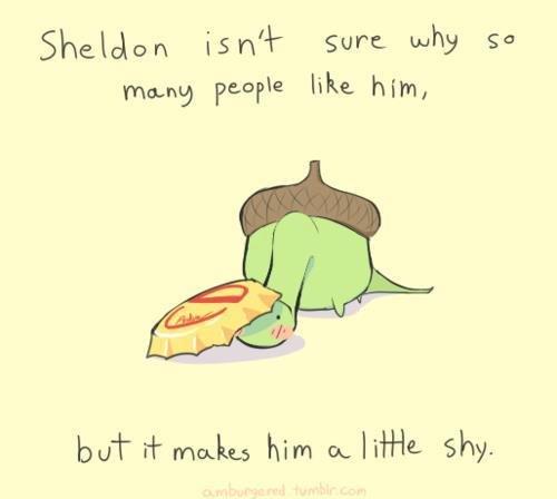 Moar of Sheldon the tiny little dinosaur. He's very shy.. :3. isr/ l- Sum: why an Peoria like. him, boi- d- troika, s him ca... Neille Shy.. My god, He's an ACORN.