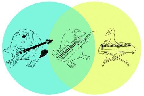 most accurate ven diagram ever. .