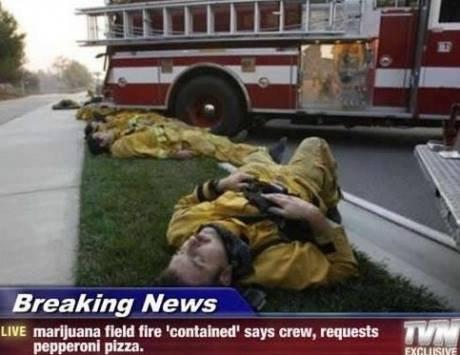 munchiesss. . Breaking Ne LIVE marijuana new the '' says crew. requests B), lloll pun. Em