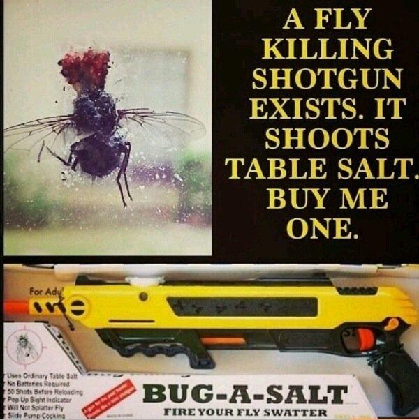 Must Haveee. SAUCE: www.youtube.com/watch?v=5SIg3WY8ehM Break Yo Self!. A FLY KILLING ? EXISTS. IT SHOOTS 1' lla. ' ial TABLE SALT. i. idiots BUY ME ONE.. A SALT gun you say?
