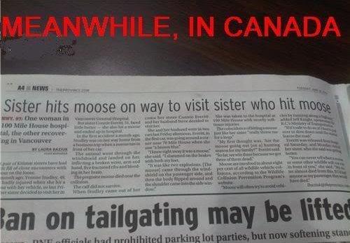"""My News Paper. No Moose ...this is from my paper !. r t. Neivis tyn dusb h"""" l' llil' l' I t Ian on tailgating ma? My auric, r, Nroc? uur sauna Jr t. m Ihr. yo dawg funny auto corre"""